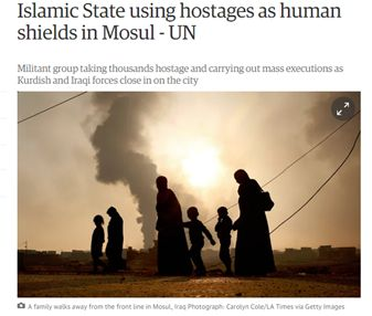 Иносми: Боевики в Мосуле подобны стервятникам