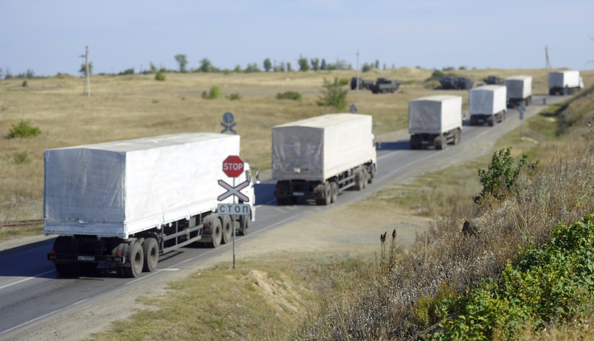 Ввоз яблок и грибов из Белоруссии превысил собранный урожай в пять раз