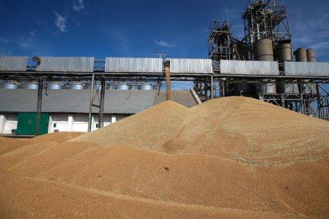 Минсельхоз: Россия потеряет мировое лидерство по экспорту пшеницы из-за турецкого эмбарго
