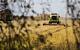 СМИ: Российские олигархи зарабатывают на аграрном экспорте больше, чем на продаже оружия