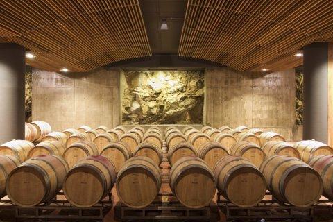 Итальянская винодельня будет поставлять в Россию вино Dimon