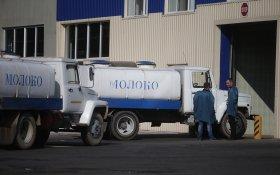 Россельхознадзор приостановит поставки белорусского молока