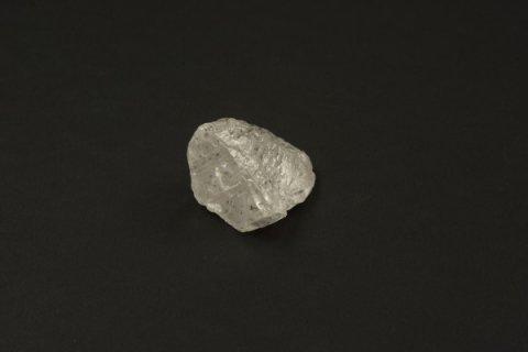 Огромный алмаз назвали в честь тренера Путина