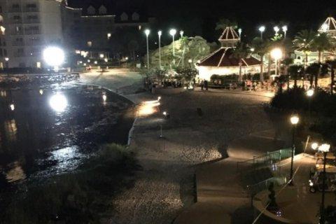 В Орландо аллигатор утащил в озеро двухлетнего мальчика
