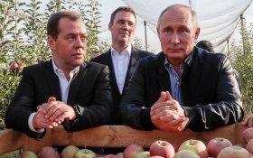 Медведев рассказал сенаторам о правильном произношении слова «свёкла»