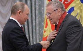 Жириновский потратил на выборы в 40 раз больше Павла Грудинина