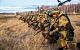 Вокруг Донбасса сосредоточена 130-тысячная группировка украинских войск