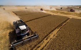 Есть чем гордится? Господдержка помогла аграриям приобрести 350 тракторов и комбайнов