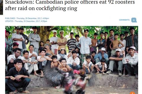 В Камбожде полиция спасла от боев 92 петуха и съела их