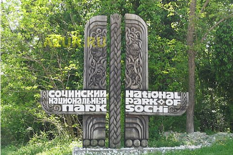 Племянница Рогозина станет директором Сочинского заповедника